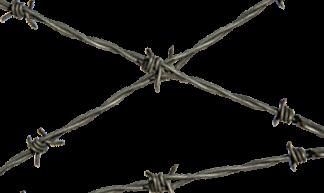 blogmedia-vluchtelingen-prikkeldraad-324x193-png.png